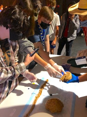 HCs Neuroscience Day allows students to participate in a new experience
